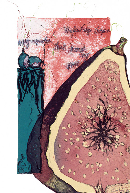 Sarah Dudley forbidden fruit print lithography fig south-figs-fire large