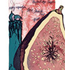 Sarah Dudley forbidden fruit lithography fig south-figs-fire thumb